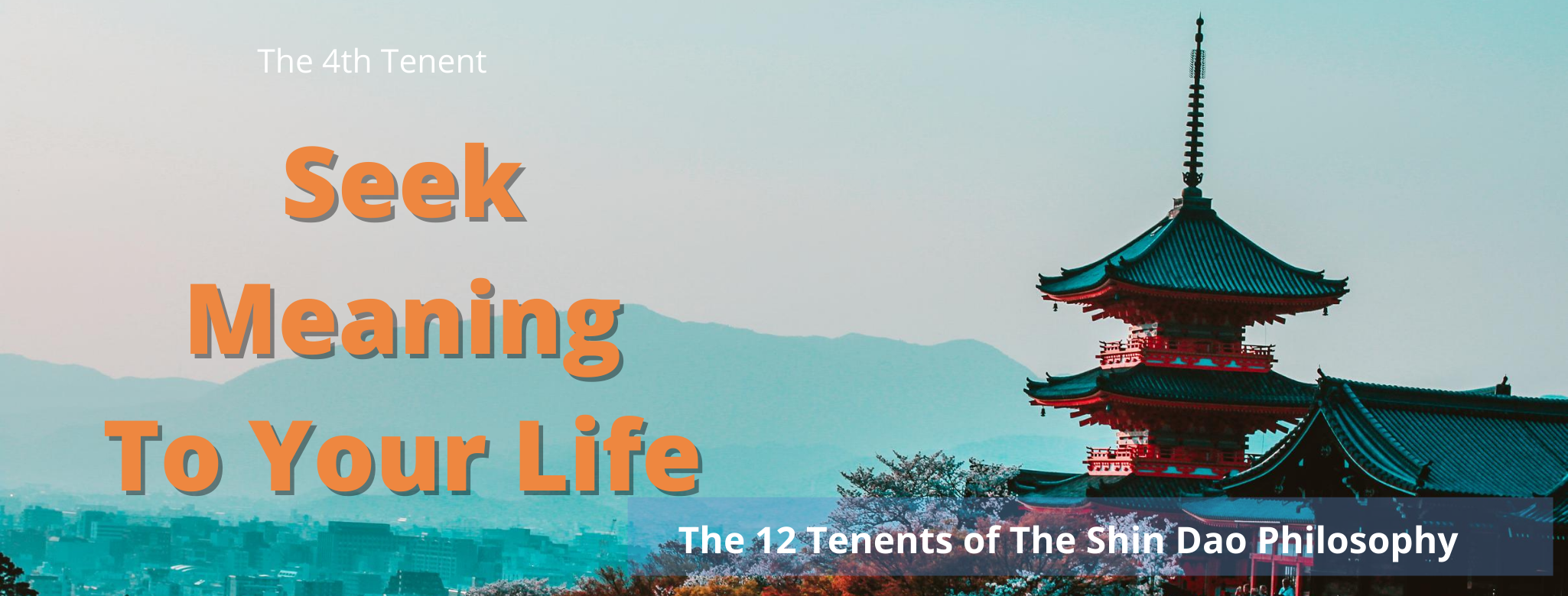SEEK MEANING TO YOUR LIFE